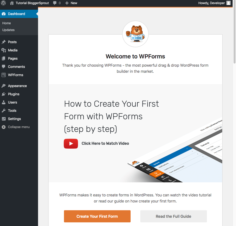 Create a Contact Form in WordPress-wpforms-bloggersprout-1