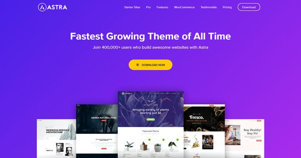 Best WordPress Themes for Elementor