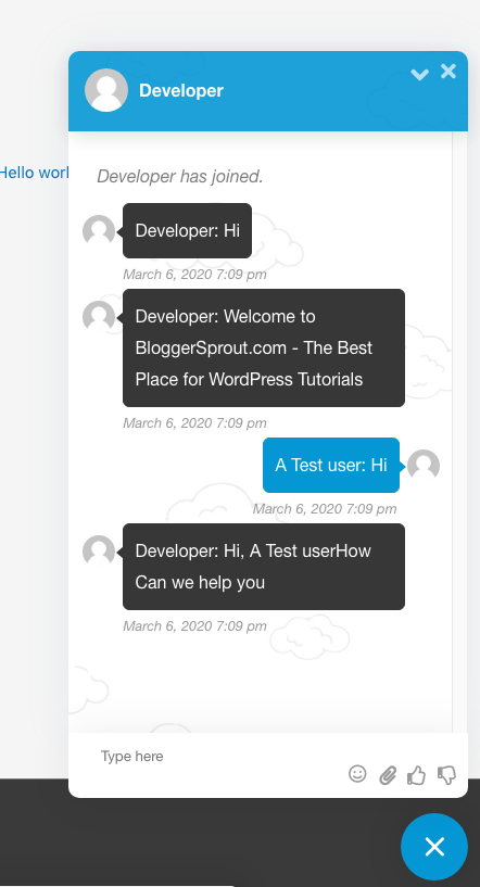 Add Live Chat to Your WordPress Site 4